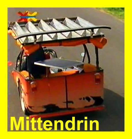 Mittendrin-Anjas Bikel von hinten